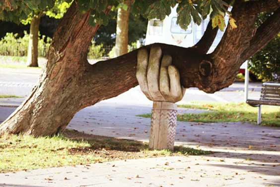 An-artistic-arm-holding-a-tree-branch