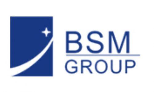 Bluestar Technology Group Logo