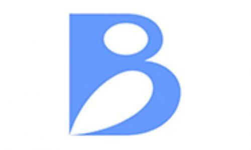Shenzhen Silver Basis Technology Logo
